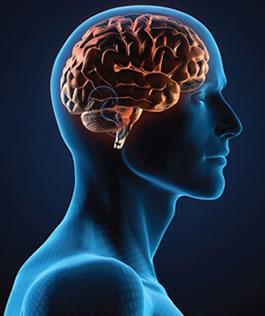 Brain Injury Statistics