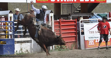 Jeff Roney Bull Rider