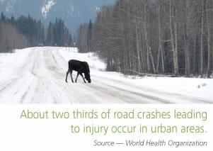 Road Safety Moose